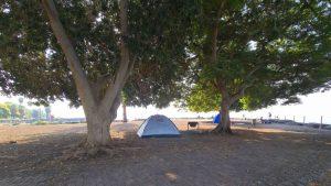 חוף אמנון, קמפינג בכנרת