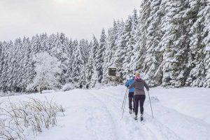 SNOWTRECK, חופשת סקי